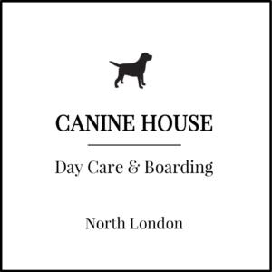 Canine House