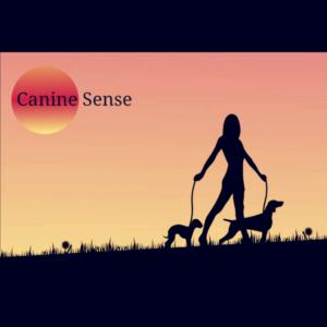 Canine Sense