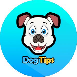 DogTips
