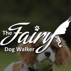 Fairy Dog Walker
