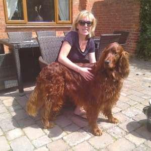 Hanneyshappyhounds