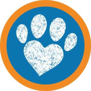 Holidays4dogs Worcestershire