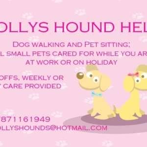 Holly's Hound Help