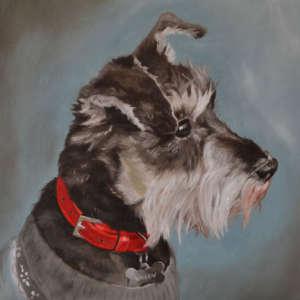 Laura Beardsell-Moore Pet Portraits