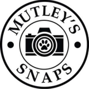 Mutley's Snaps