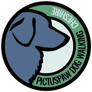 PictusPaw Dog Walking