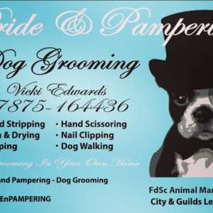 Pride And Pampering Dog Grooming