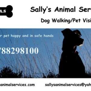 Sally's Animal Services