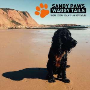 Sandy Paws & Waggy Tails