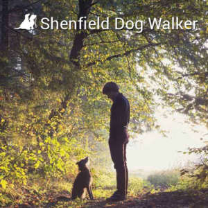 Shenfield Dog Walker
