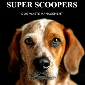 Super Scoopers