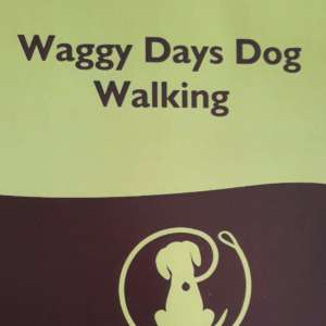 Waggy Days Dog Walking