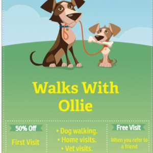 Walks With Ollie
