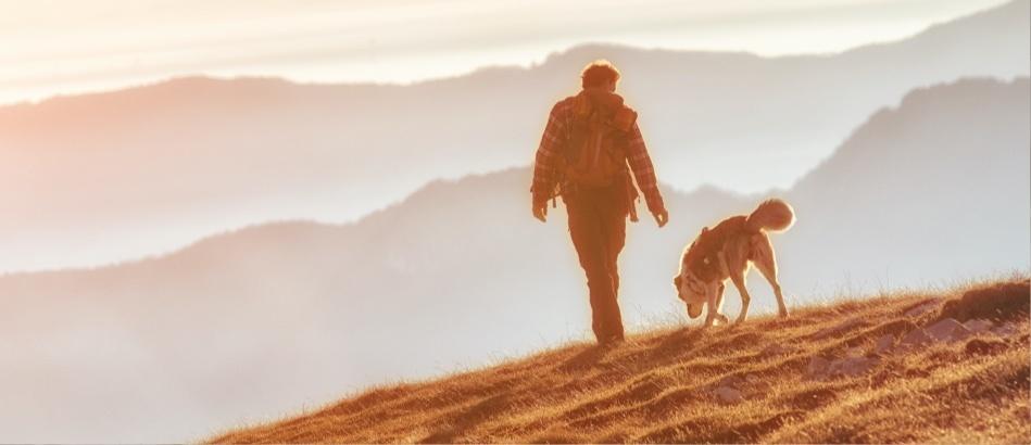 Walking dog on hill