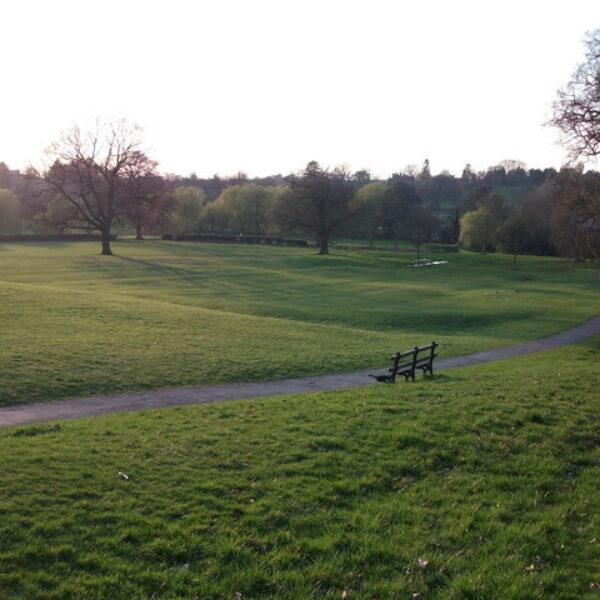 Dog walk at Abbey Fields
