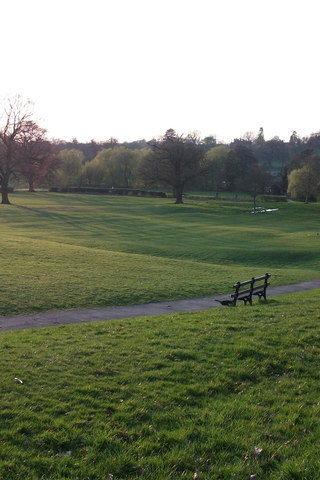 Dog walk at Abbey Fields photo