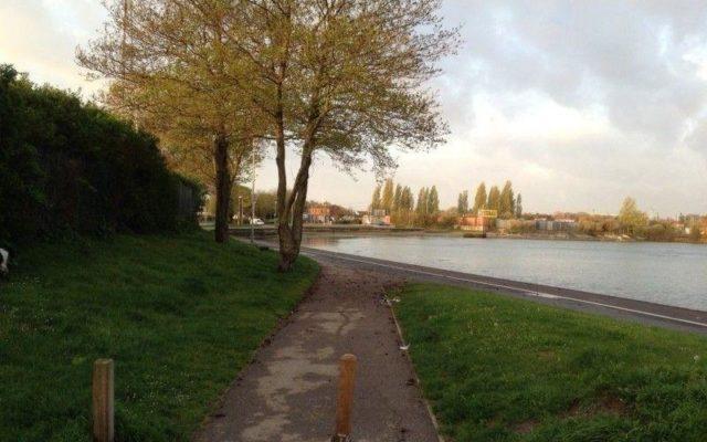 Alexandra Park Dog walk in Hampshire