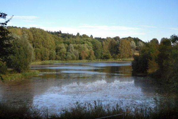 Amwell Nature Reserve & Ash Valleyphoto