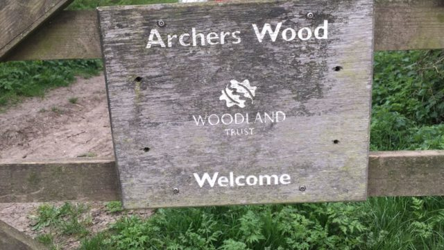 Dog walk at Archers Wood