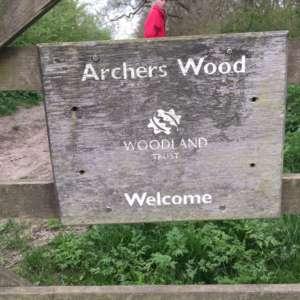 Archers Wood
