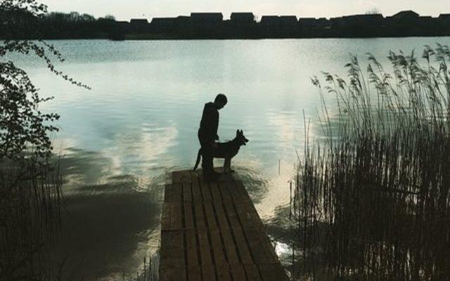 Ashby Vile Nature Reserve Dog walk in Lincolnshire