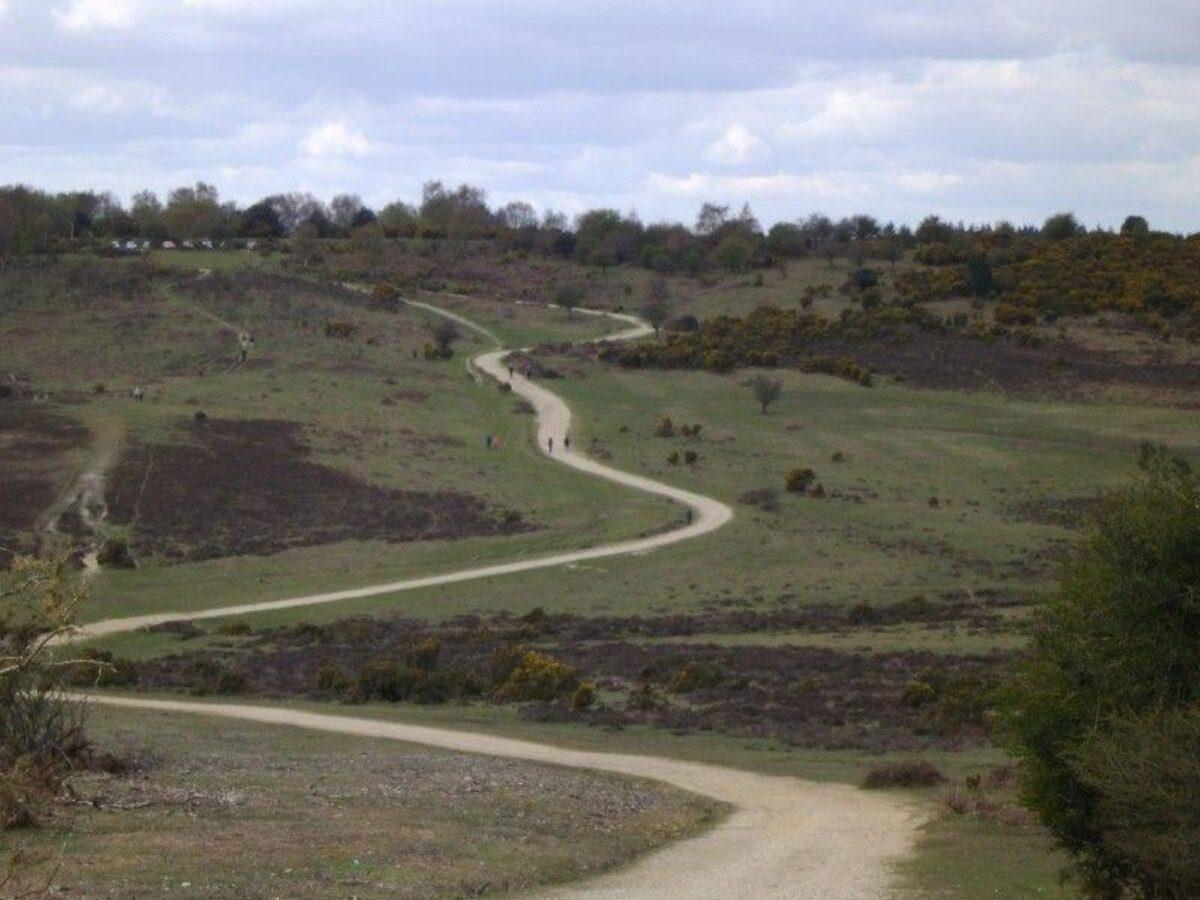 Ashley Walk (New Forest) large photo 4