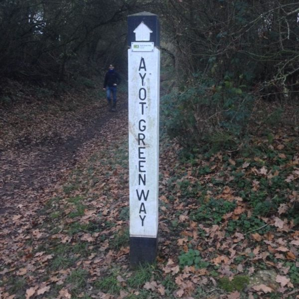 Ayot Greenway photo 2
