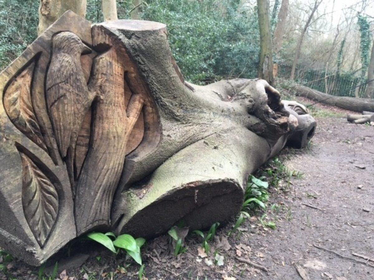 Badock's Wood large photo 2