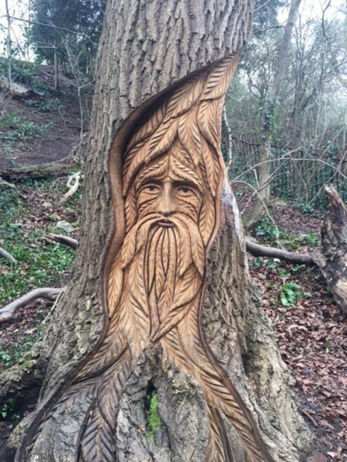 Badock's Wood large photo 3