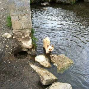Bakers Park/Bradley Manor