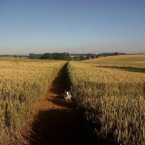 Banbury To Drayton Fields photo 1