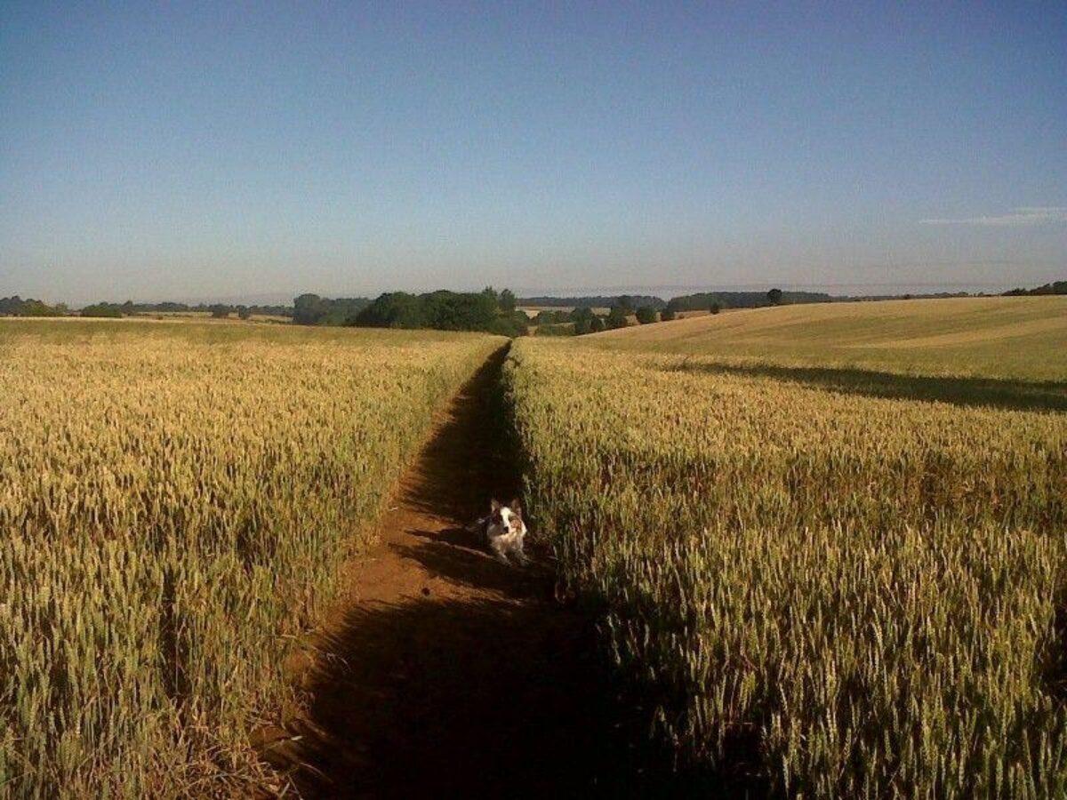 Banbury To Drayton Fields large photo 1