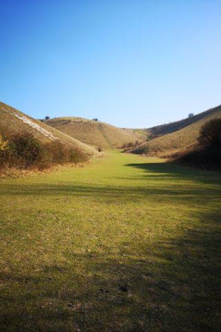 Dog walk at Barton Hills Nature Reserve photo