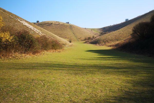 Barton Hills Nature Reservephoto
