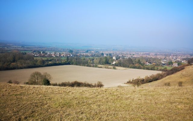 Barton Hills Nature Reserve Dog walk in Bedfordshire
