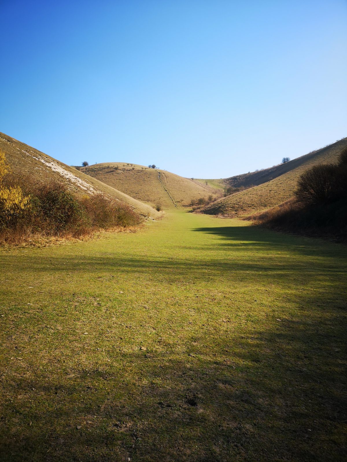 Barton Hills Nature Reserve large photo 1