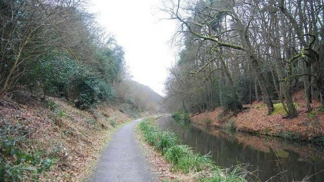 Dog walk at Basingstoke Canal - Frimley (& Deepcut)