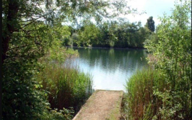 Bedfont Lakes County Park Dog walk in Middlesex