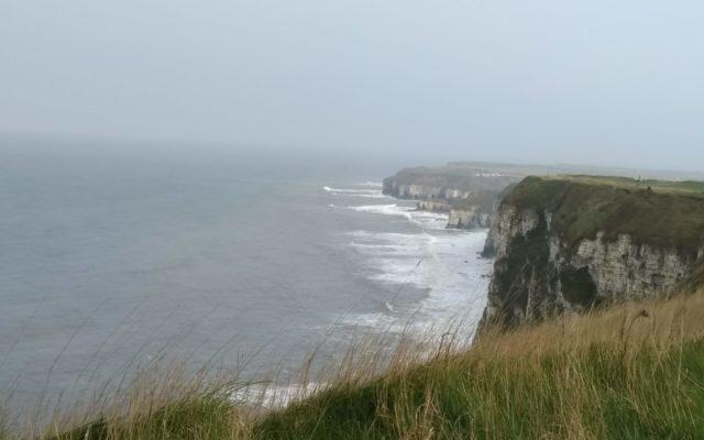 Bempton Cliffs, North Yorkshire Dog walk in Yorkshire (North)