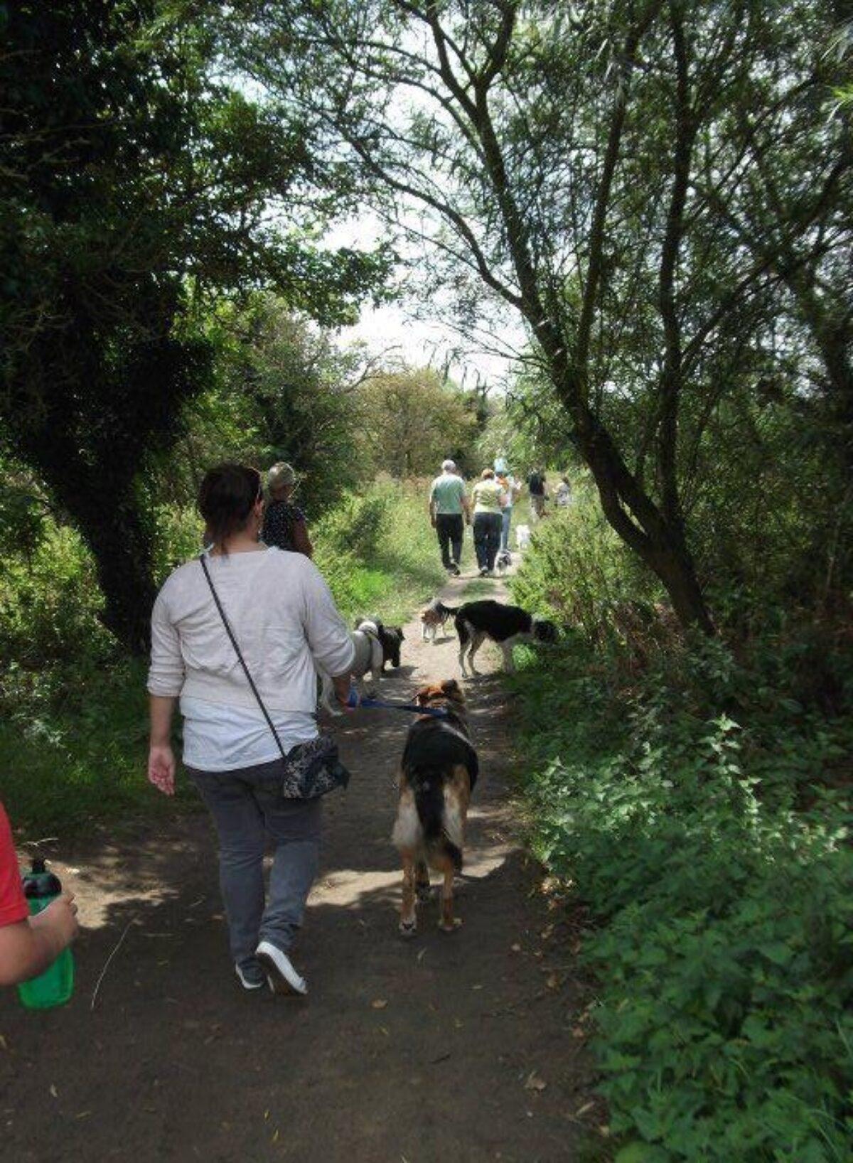 St Neots - Weekly Walk large photo 2