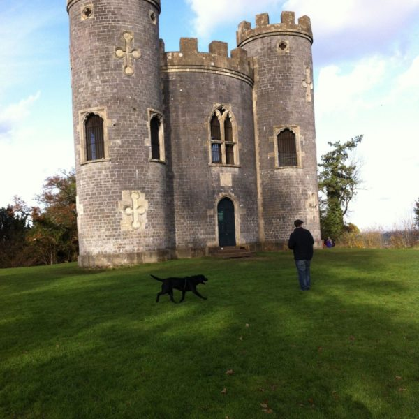 Dog walk at Blaise Castle Estate