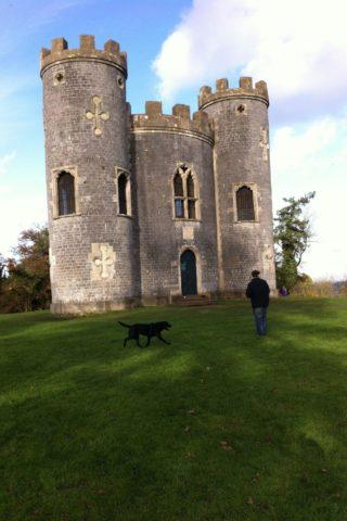 Dog walk at Blaise Castle Estate photo