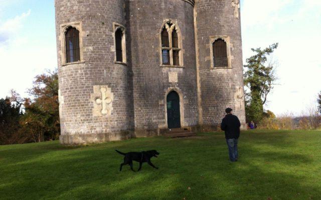 Blaise Castle Estate Dog walk in Bristol (City of)