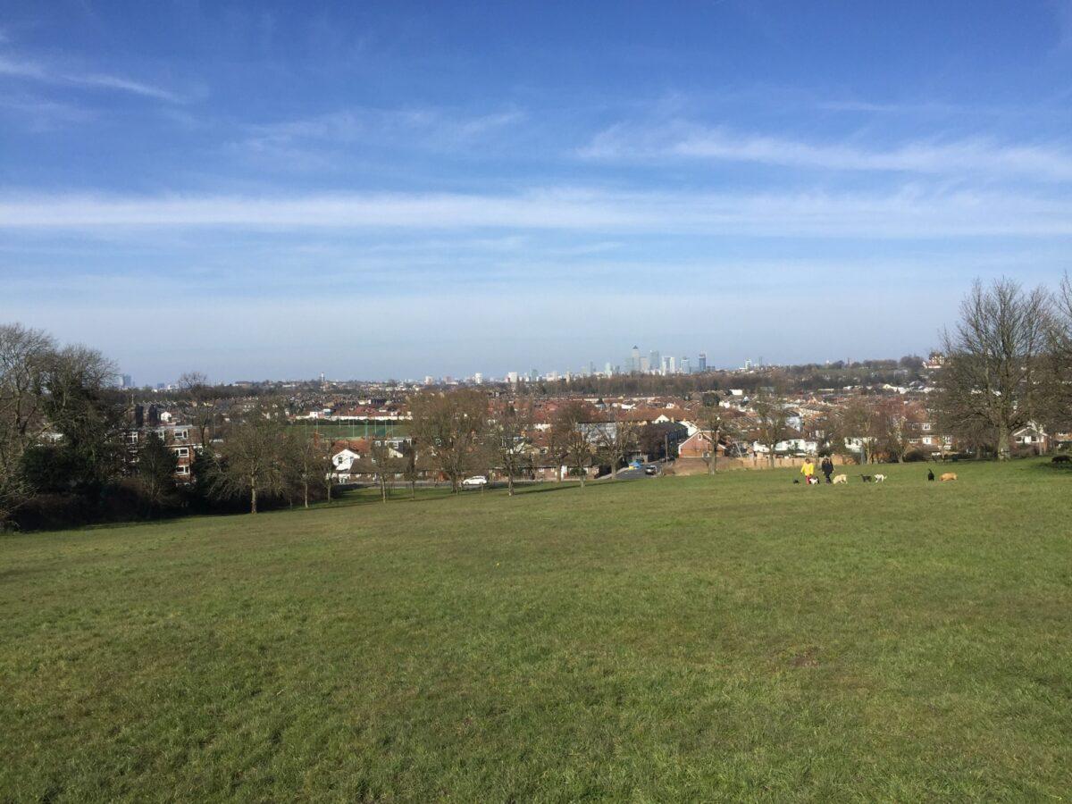 Blythe Hill Fields large photo 1