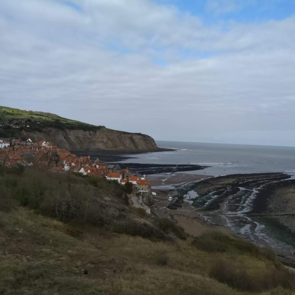 Dog walk at Boggle Hole, Robin Hood's Bay