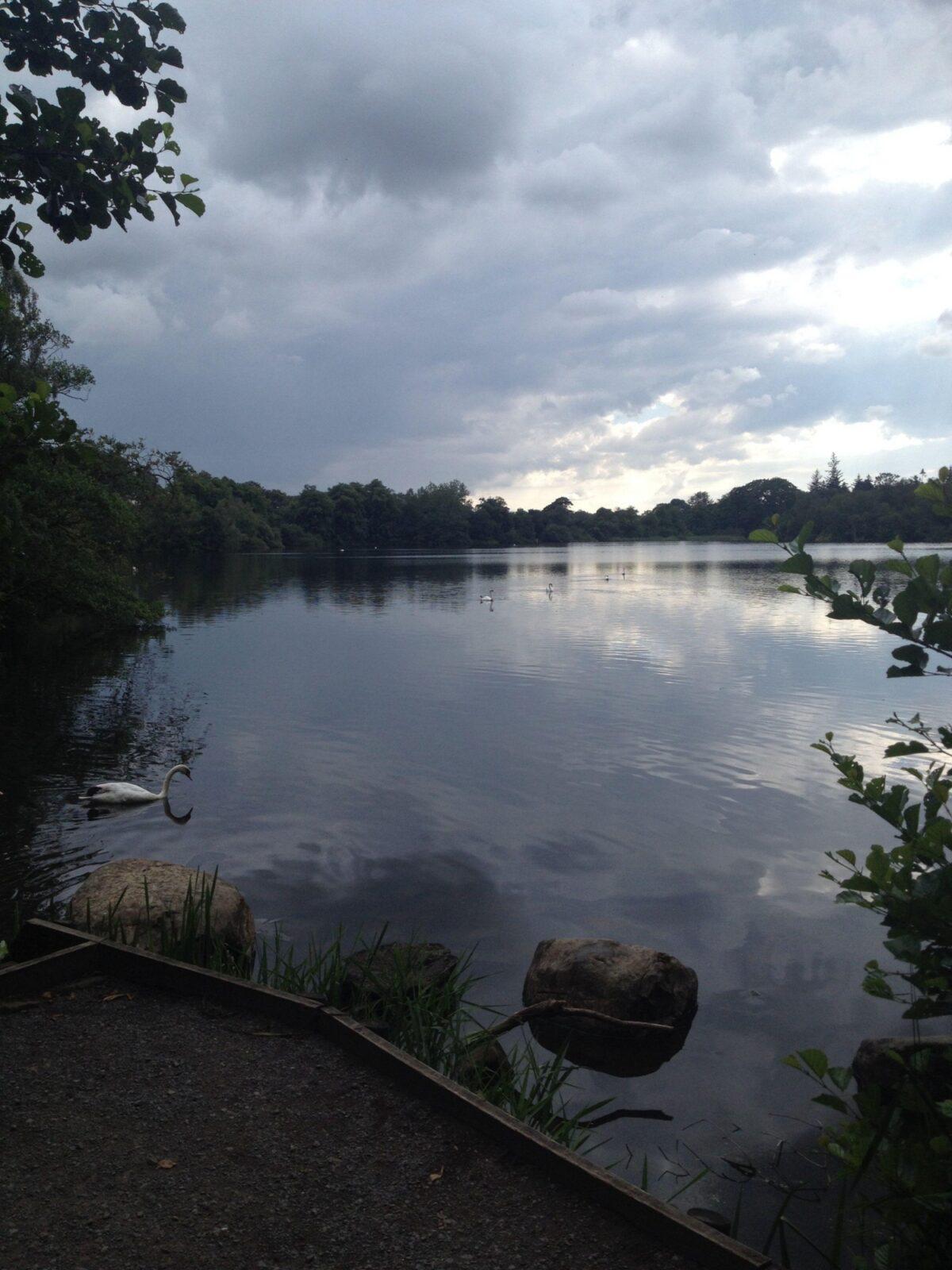Bolam Lake large photo 1