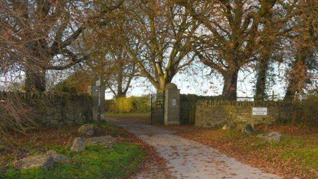 Dog walk at Box Woods & Hazelbury Manor