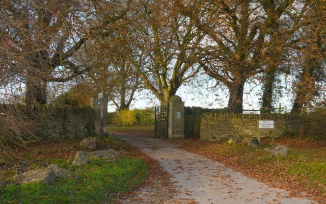 Box Woods & Hazelbury Manor Dog walk in Wiltshire