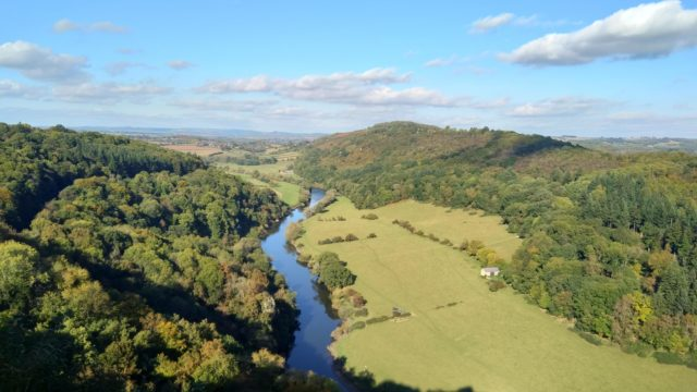 Dog walk at Bracelands to Symonds Yat