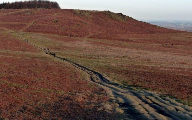 Bradgate Park Trail Dog walk in Leicestershire
